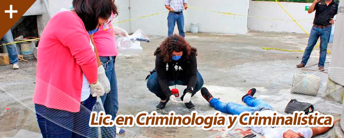 img_criminalistica